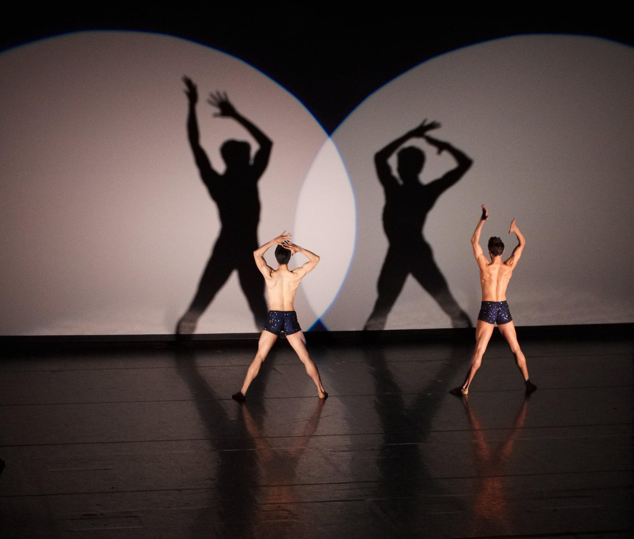 Ballet | uncoy com | la vie viennoise